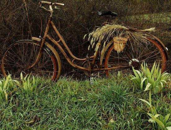 Roulons à Vélo