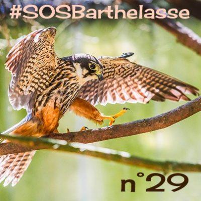 SOS Barthelasse